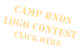 Camp Bnos Logo Contest -Click Here-